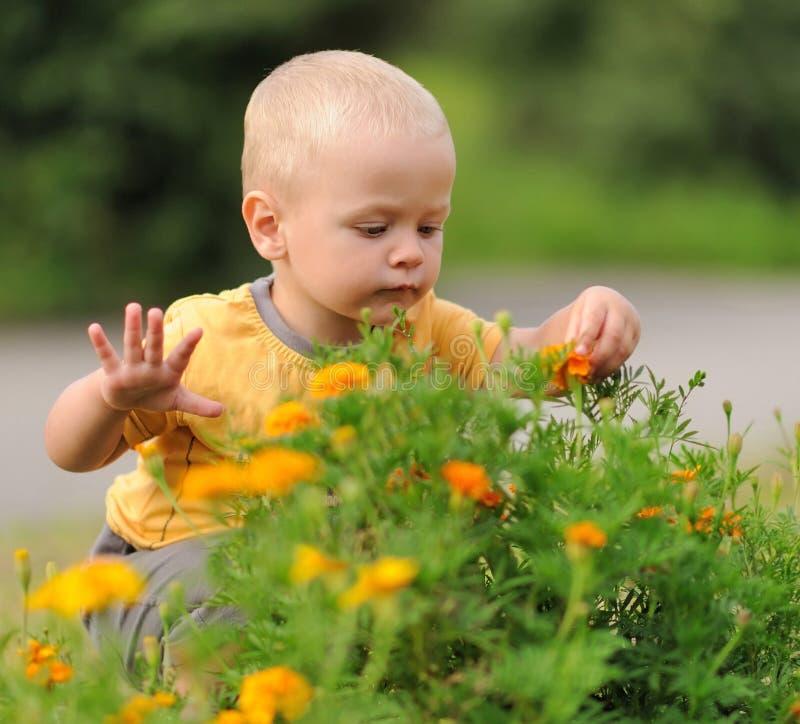 幸福婴孩 免版税库存图片