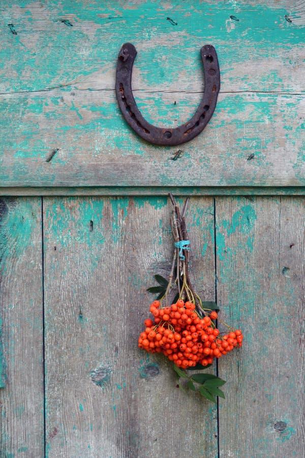 幸运的在门和花楸浆果的标志生锈的马掌 库存照片