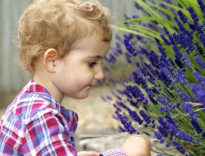 幼儿,女孩,嗅到的淡紫色开花。 免版税库存照片