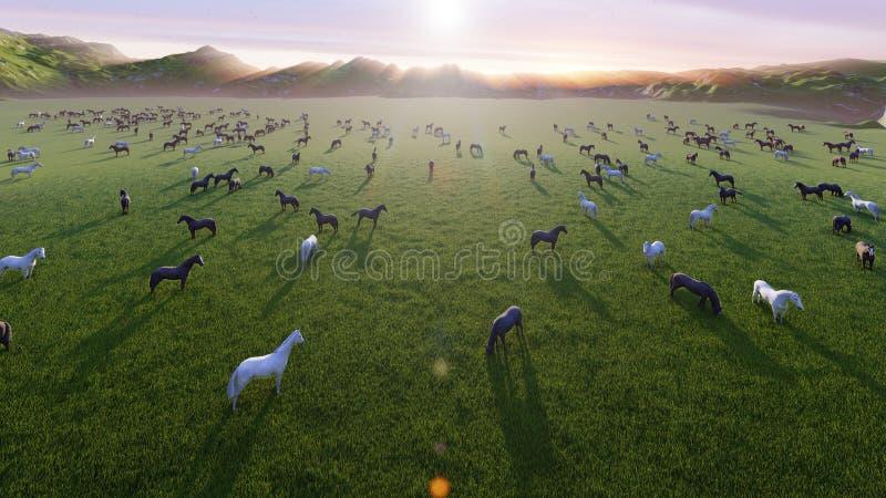 幼小马牧群在一个美丽如画的绿色草甸吃草在一个美好的夏天早晨 3d?? 向量例证