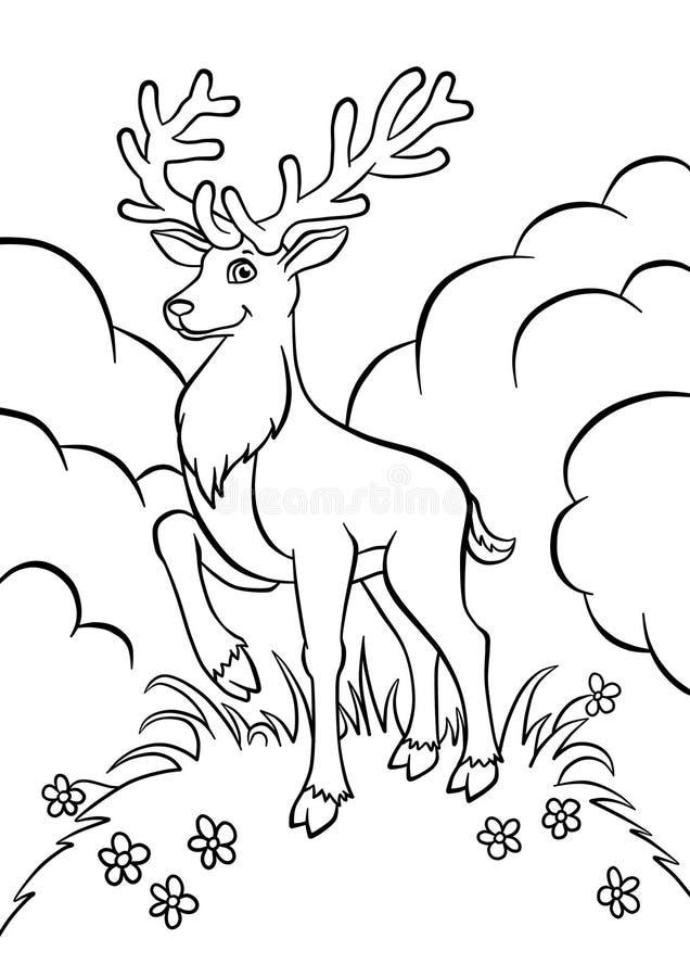 幼小鹿在森林里 库存例证