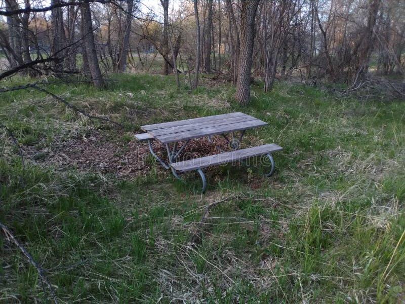 幽静公园长椅 免版税库存照片