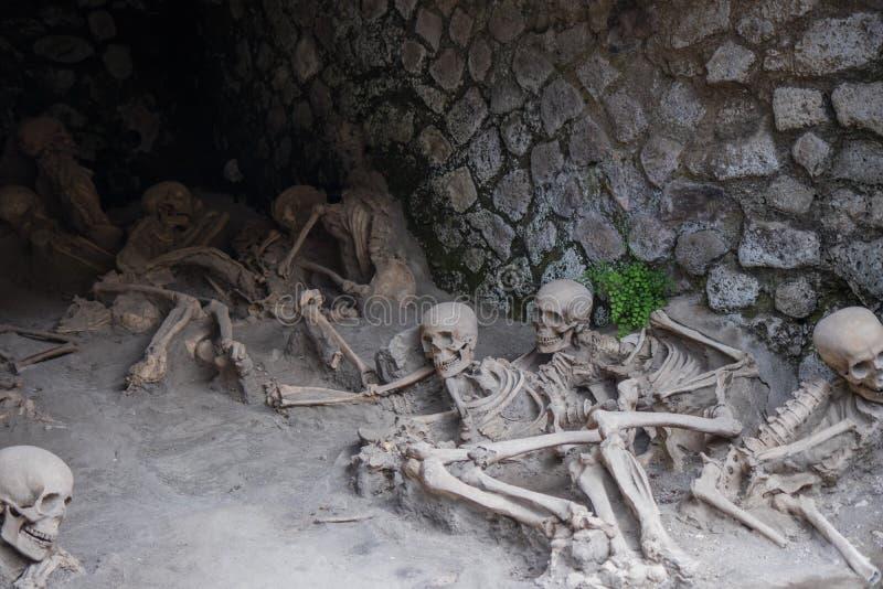 广告79维苏威爆发,赫库兰尼姆,意大利的受害者骨骼遗骸  免版税库存图片