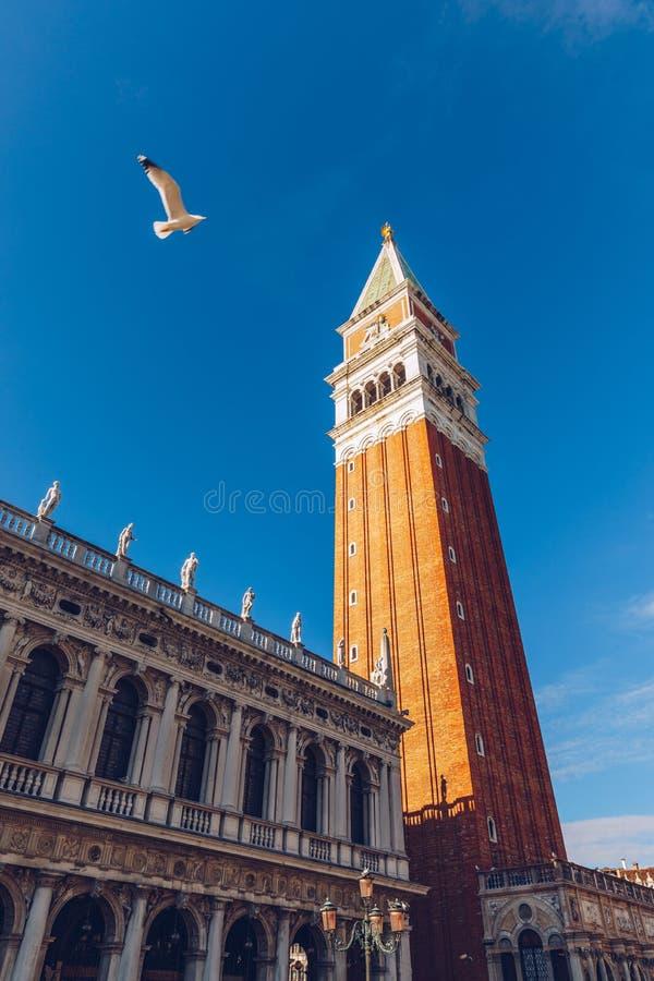 广场有钟楼的圣Marco 意大利威尼斯 钟楼二Venezia位于圣马可广场,意大利 库存图片