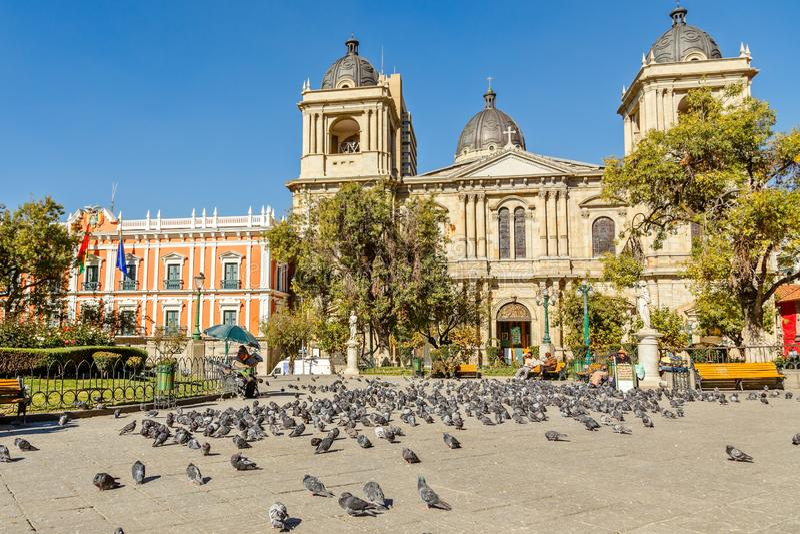 广场牟利罗,充分拉巴斯中心广场与大教堂在背景中,玻利维亚的鸽子 免版税库存照片
