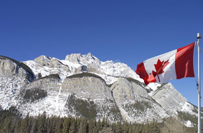 庄严加拿大人在加拿大旗子后被装饰的罗基斯 库存照片