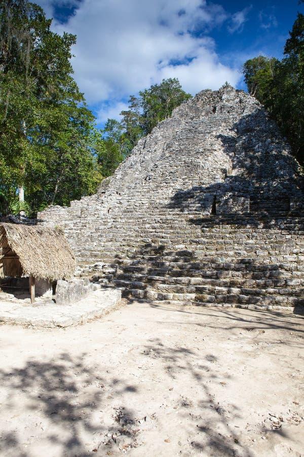 庄严废墟在科巴,墨西哥 免版税图库摄影
