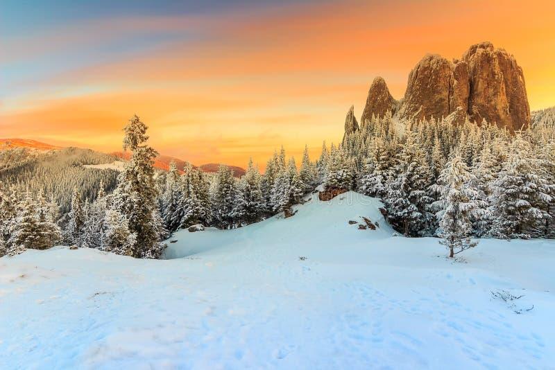 庄严日落和冬天环境美化,孤独石,喀尔巴汗,罗马尼亚,欧洲 库存图片