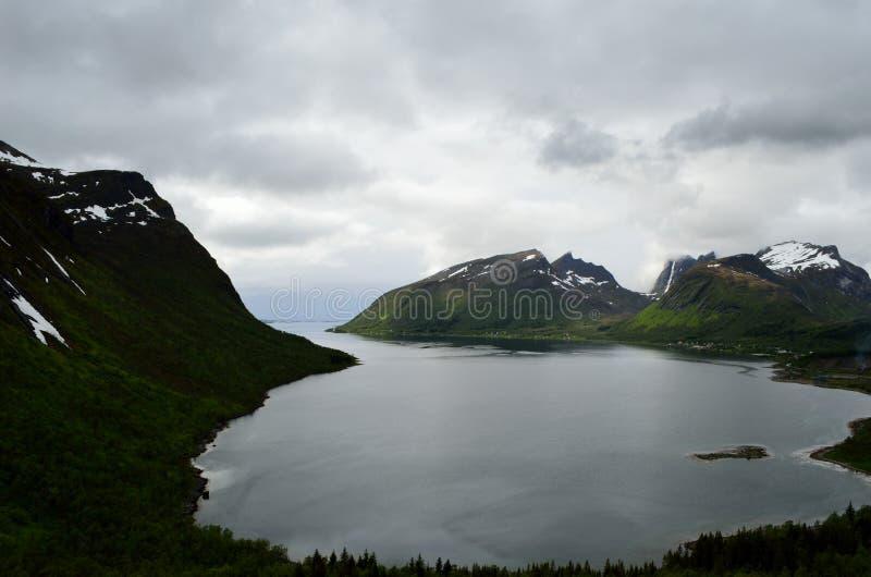 庄严海湾和山在北挪威环境美化 库存图片