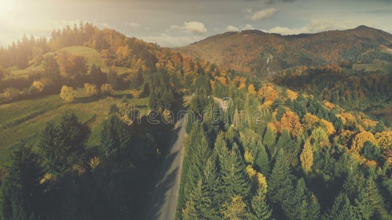 庄严登上自然森林风景鸟瞰图 免版税图库摄影