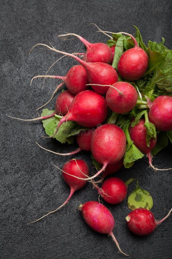 庄稼萝卜莴苣,农业,红色束 免版税库存照片