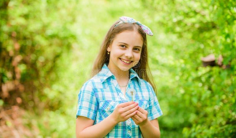 庆祝夏天 蒲公英美好和充分的象征主义 作为蒲公英的光 r 女孩土气样式做 库存照片
