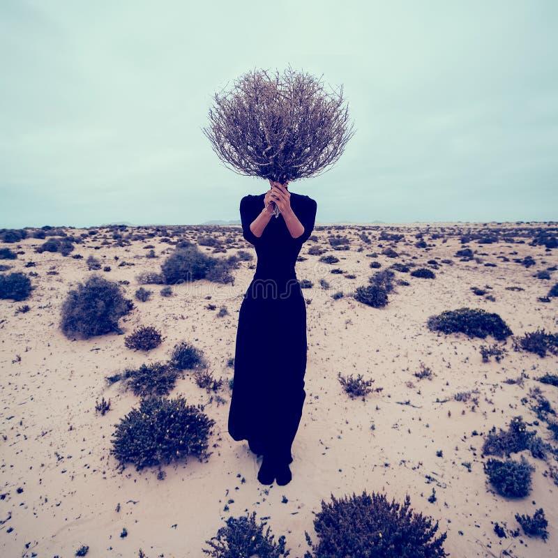 床单方式放置照片诱人的白人妇女年轻人 女孩在有花束死的分支的沙漠 图库摄影