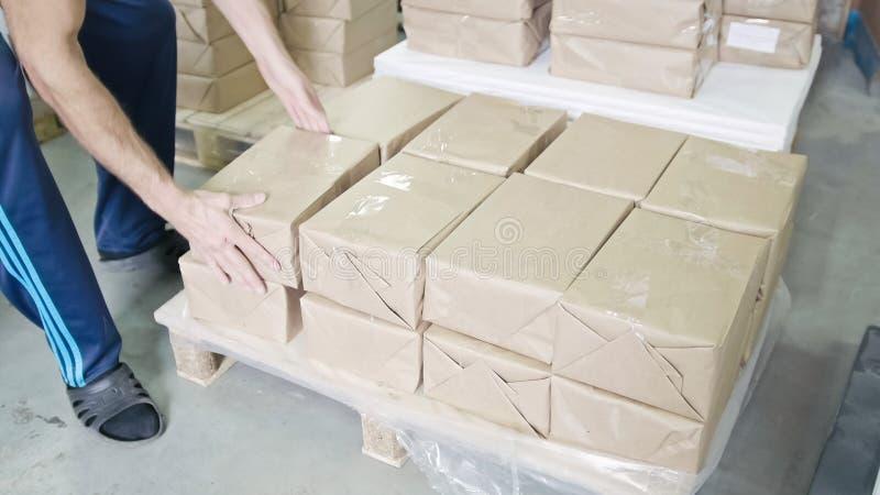 仓库包装盒的工厂劳工交付的 库存图片