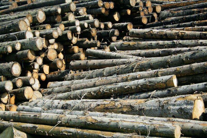 库存木材 免版税库存照片