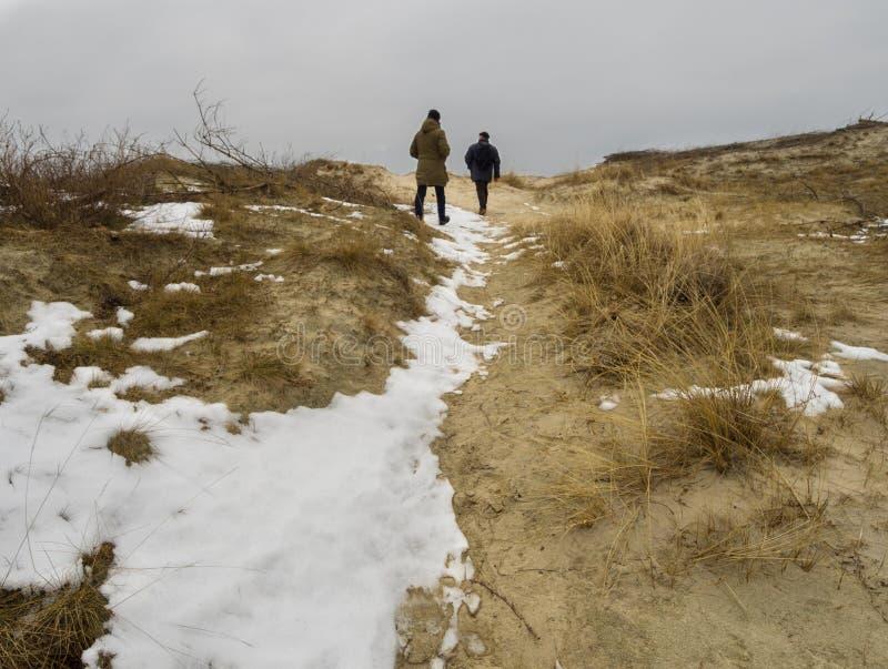 库尔斯沙嘴立陶宛的沙丘的游人在雪下的 免版税库存图片