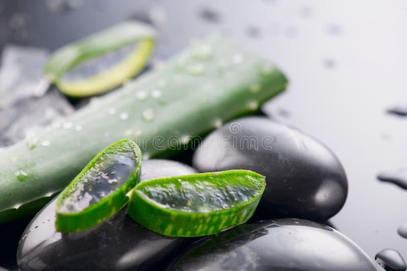 库拉芦荟切片和温泉石 阿洛韦拉植物叶凝胶、天然有机更新化妆品、替代药物 斯金卡 库存图片