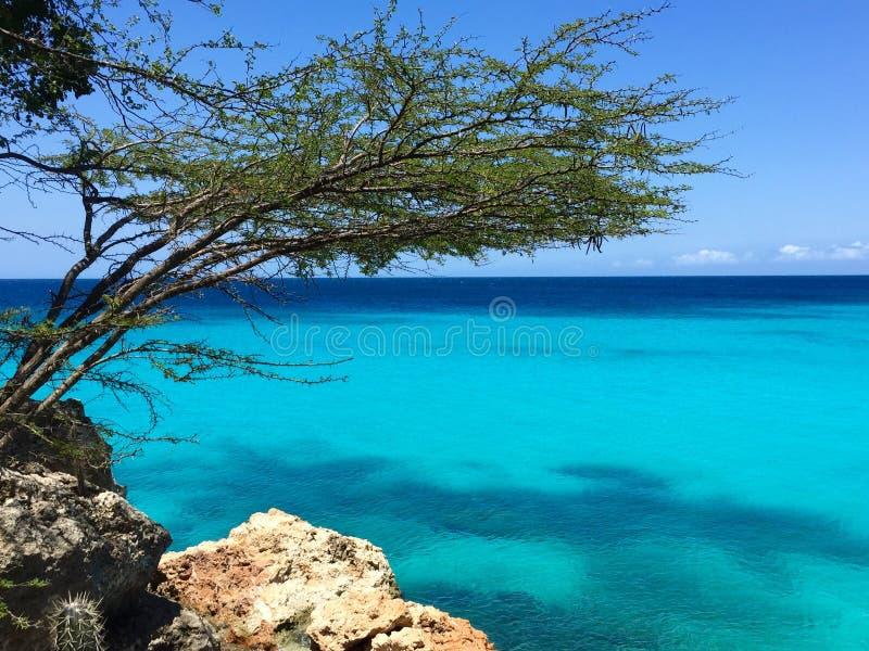 库拉索岛的蓝色海 库存照片