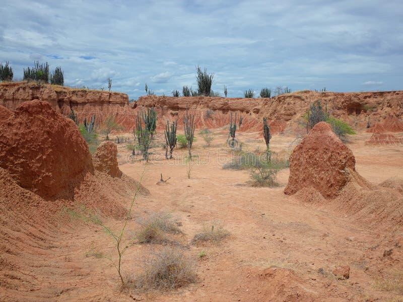 库斯科省火星的风景,红色沙漠,一部分的哥伦比亚` s Tatacoa沙漠 免版税图库摄影
