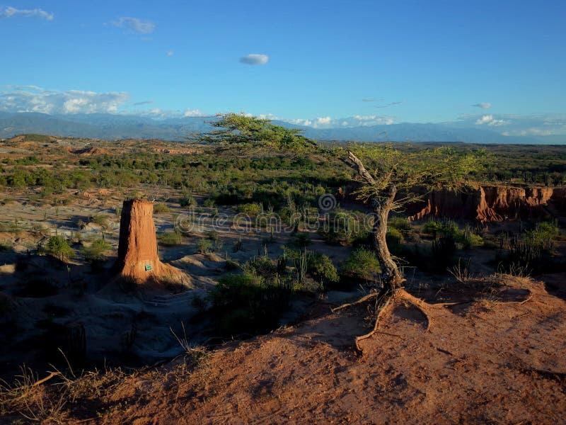 库斯科省火星的风景,红色沙漠,一部分的哥伦比亚` s Tatacoa沙漠 免版税库存照片