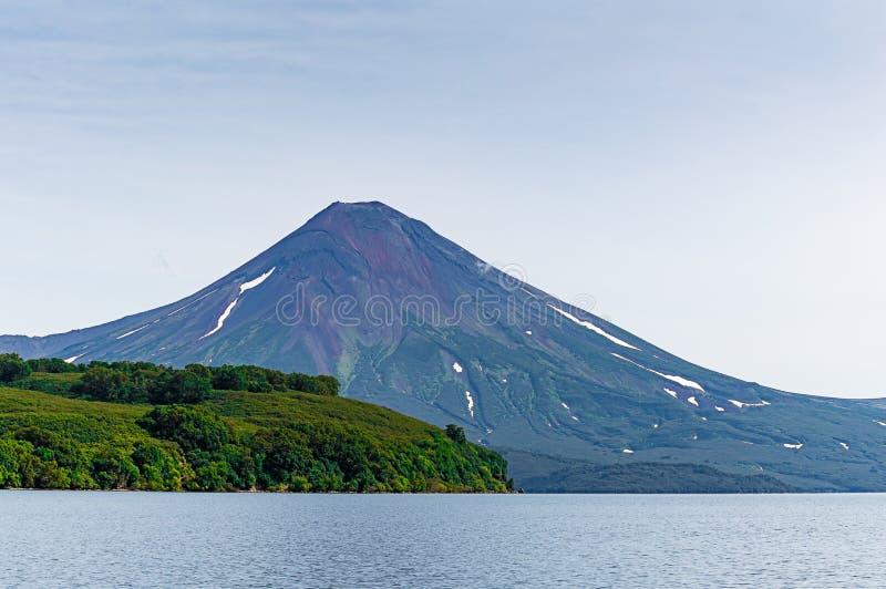 库页湖 堪察加 俄国 绿色领域和火山 松鸡爱本质歌曲通配木头 库存照片