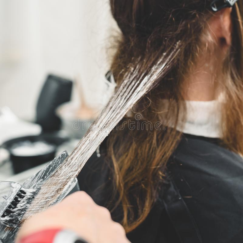 应用染料的美发师 免版税库存照片