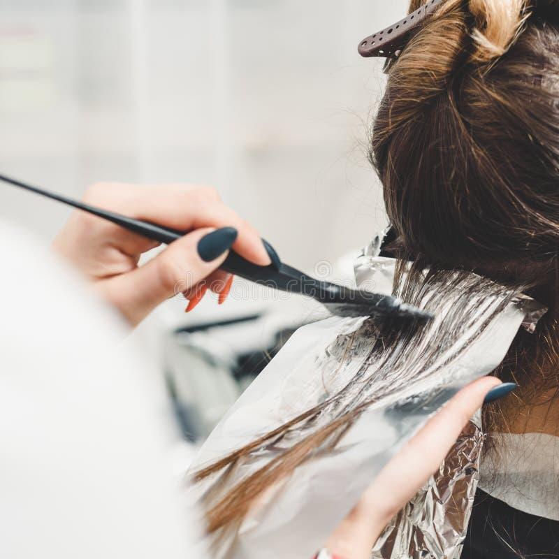 应用染料的美发师 库存照片