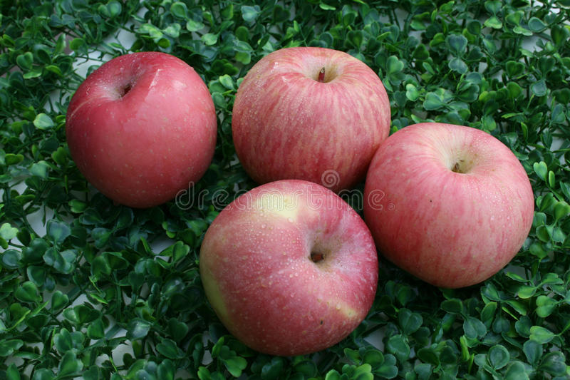 应用 关闭在绿色背景的苹果 免版税图库摄影