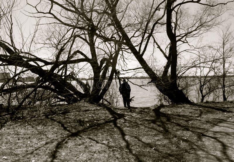 底特律公园视图 库存图片