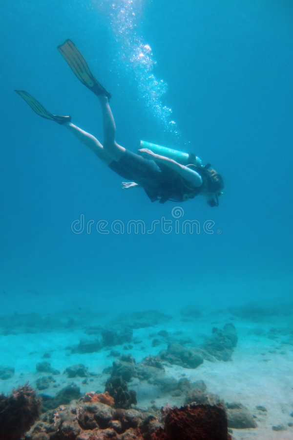 底部潜水员 库存照片