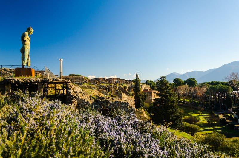 庞贝城,意大利老葡萄酒石废墟  免版税库存图片