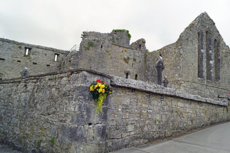 废墟在阿什富德爱尔兰 库存图片