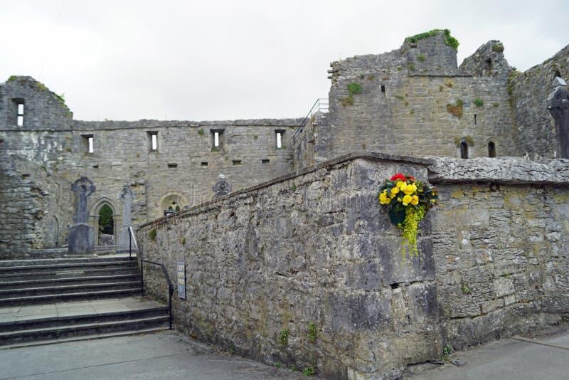 废墟在阿什富德爱尔兰 图库摄影
