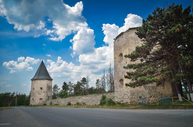 废墟城堡在Kryvche 免版税库存照片
