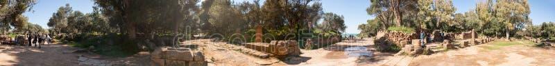 废墟Tipasa (提帕萨) 滑稽的城市是一colonia在罗马省毛里塔尼亚Caesariensis所在地 免版税库存照片