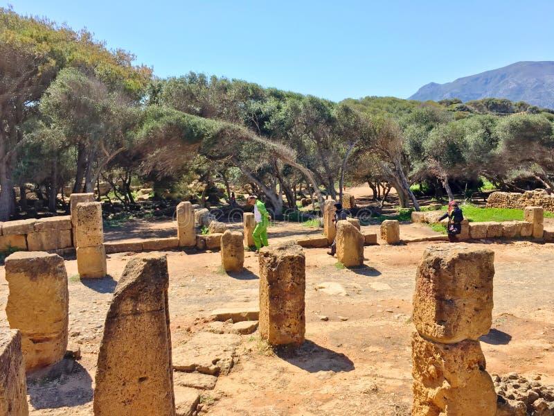 废墟Tipasa (提帕萨) 滑稽的城市是一colonia在罗马省毛里塔尼亚Caesariensis所在地 库存照片