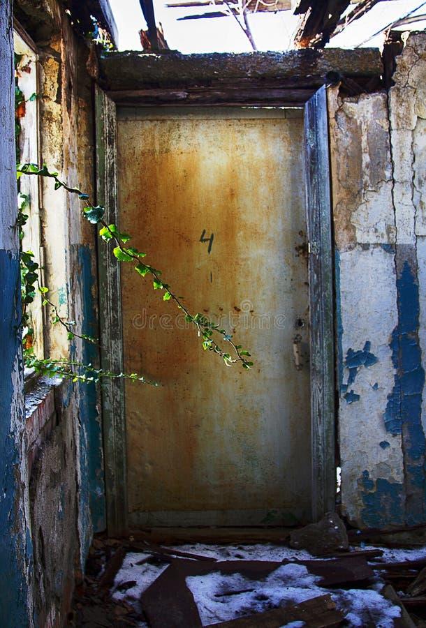 废屋,树枝破玻璃长 库存图片