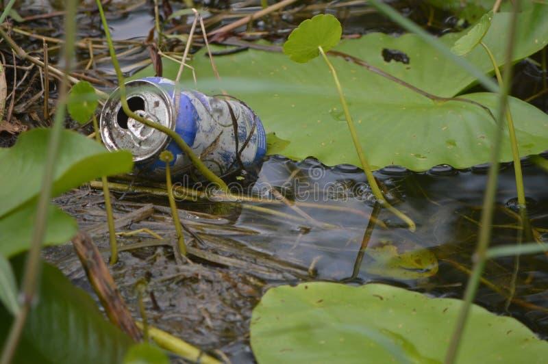 废弃物在沼泽地 免版税图库摄影