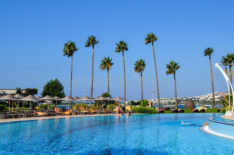 度假村游泳池周围 免版税库存图片