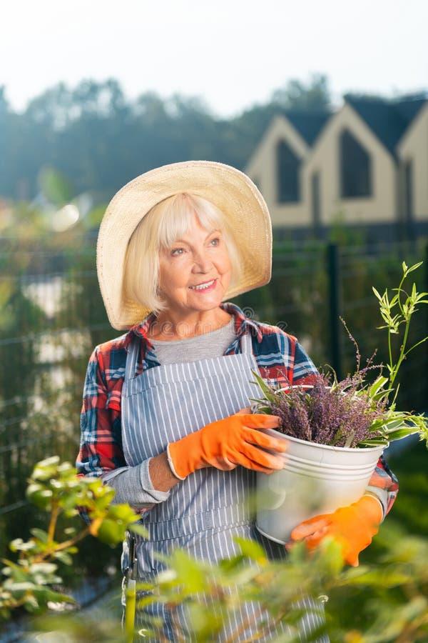 度过一天的微笑的俏丽的老妇人外面 库存照片
