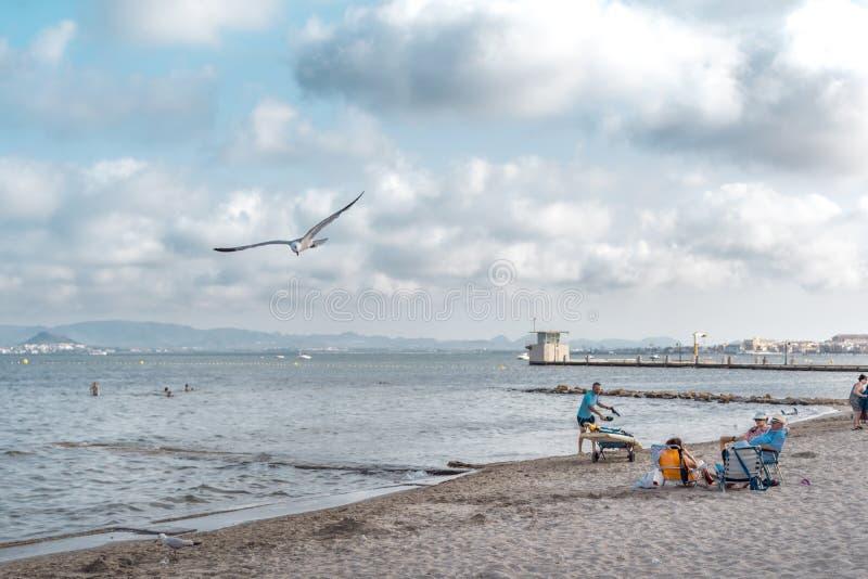 度过他们的周末的家庭在海滩 库存照片