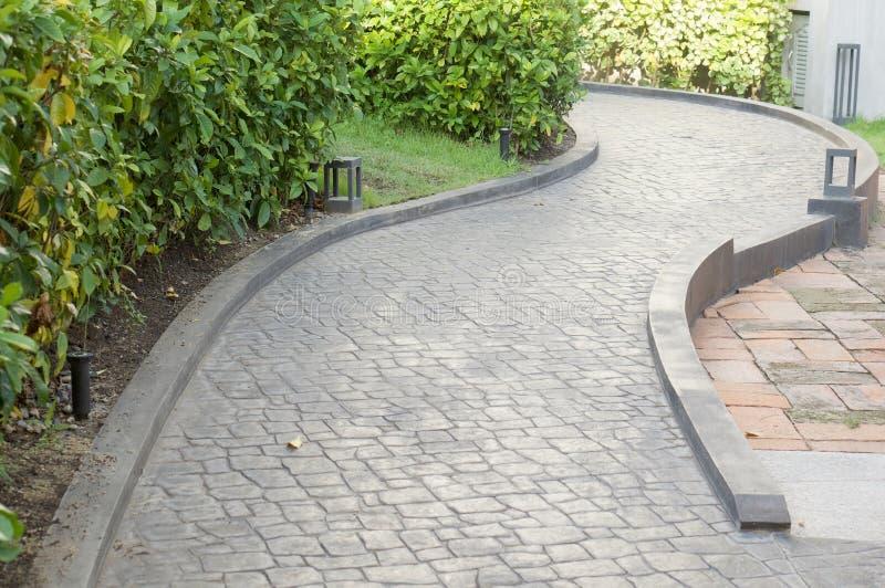庭院与植物的步行方式在左边 图库摄影