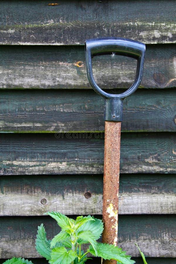 庭院从事园艺 库存图片