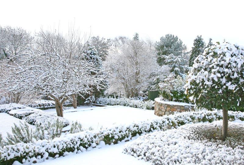 庭院冬天 免版税库存照片
