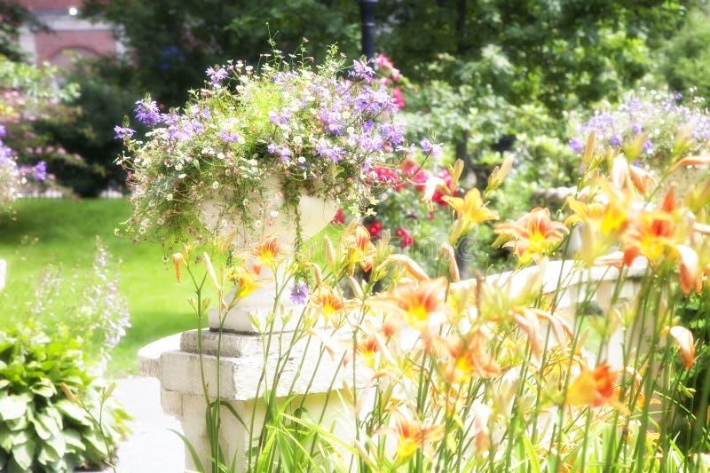 庭院发光 免版税库存图片