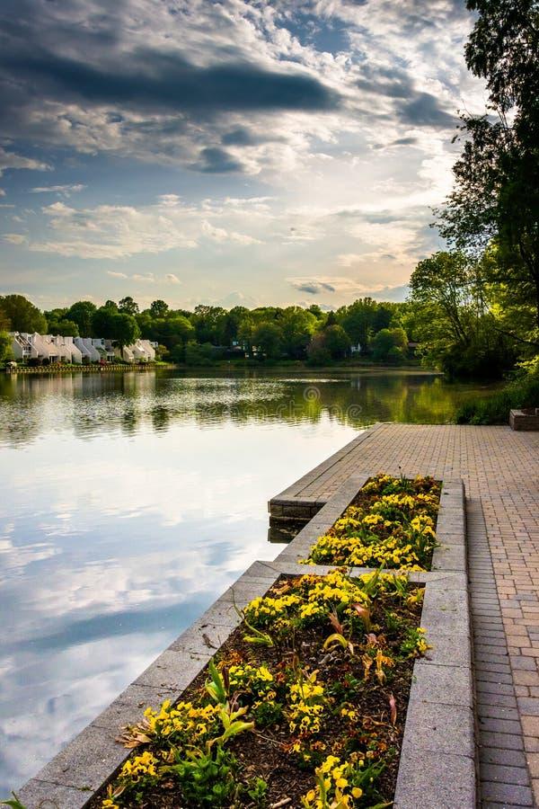 庭院和散步沿Wilde湖岸,在哥伦比亚, 免版税库存图片