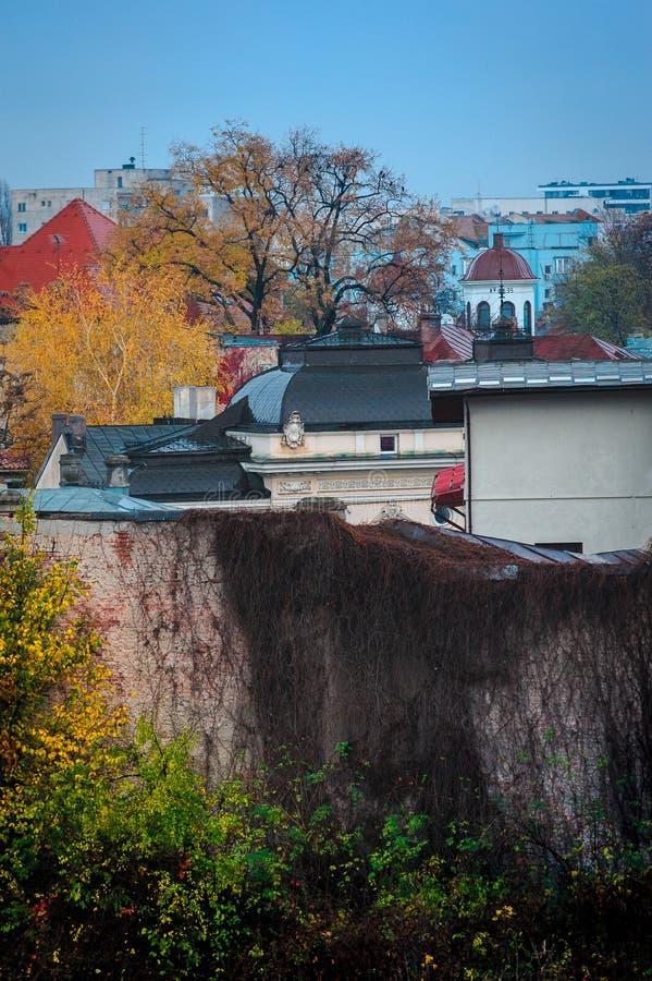 庭院在布加勒斯特 库存照片