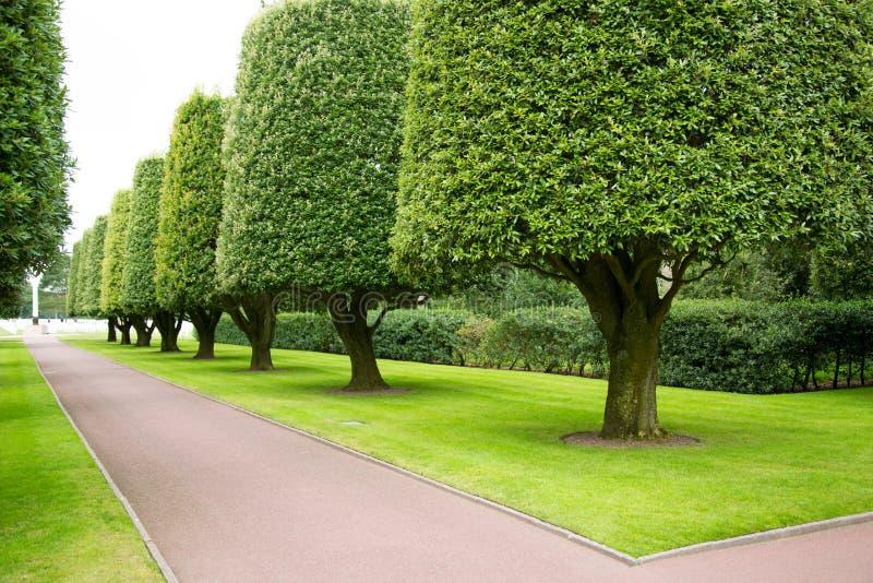 庭院在美国公墓 免版税库存照片