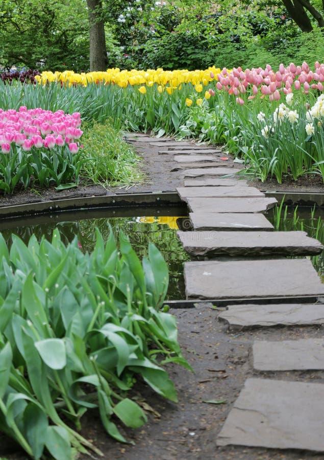 庭院垫脚石道路穿过五颜六色的花 免版税库存照片