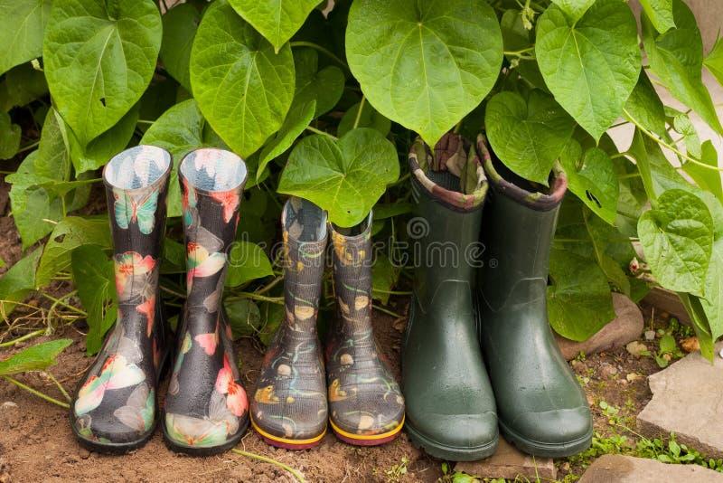 庭院多雨橡胶鞋子在庭院里 免版税库存图片